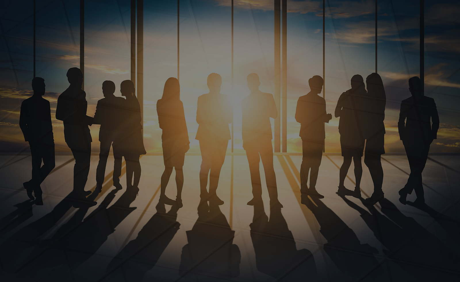 Silhouettes of group of business people standing talking